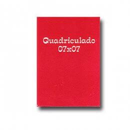caderno quadriculado 14 r2095.jpg